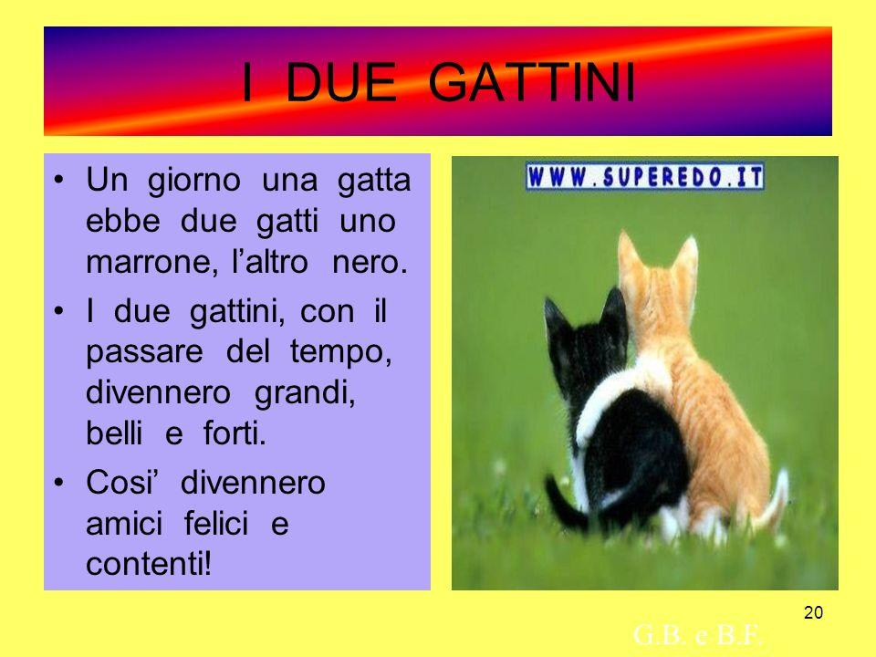 20 I DUE GATTINI Un giorno una gatta ebbe due gatti uno marrone, laltro nero. I due gattini, con il passare del tempo, divennero grandi, belli e forti