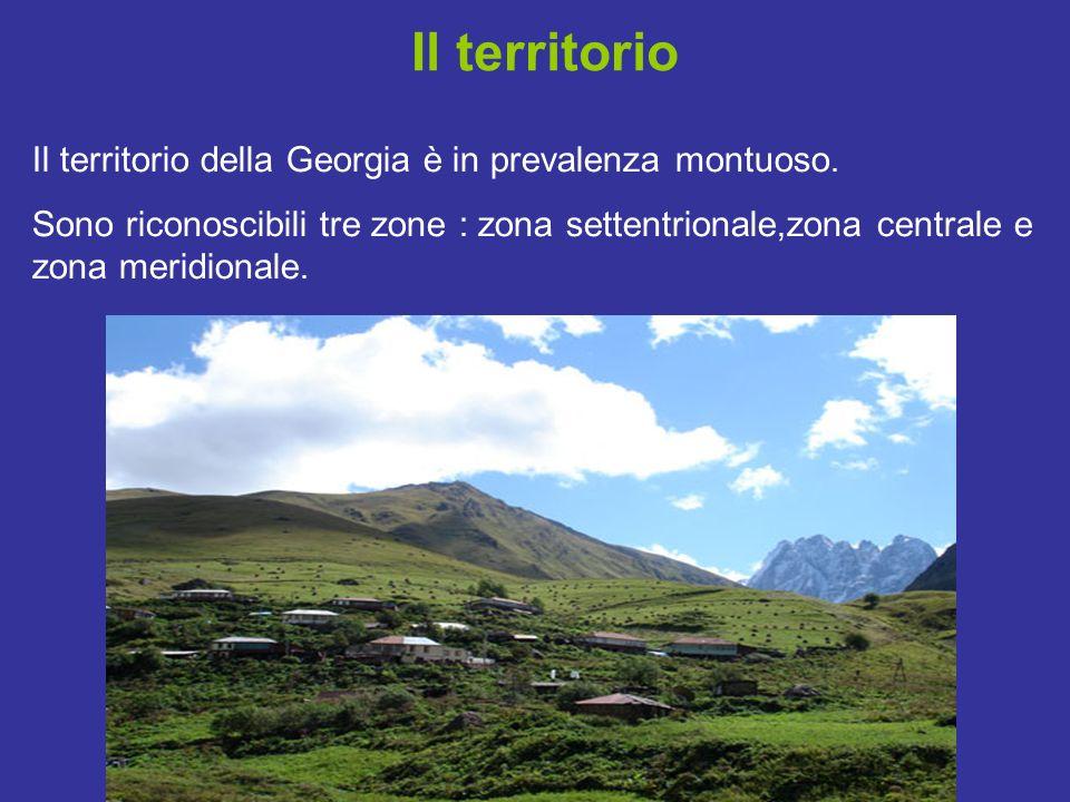 Il territorio Il territorio della Georgia è in prevalenza montuoso. Sono riconoscibili tre zone : zona settentrionale,zona centrale e zona meridionale