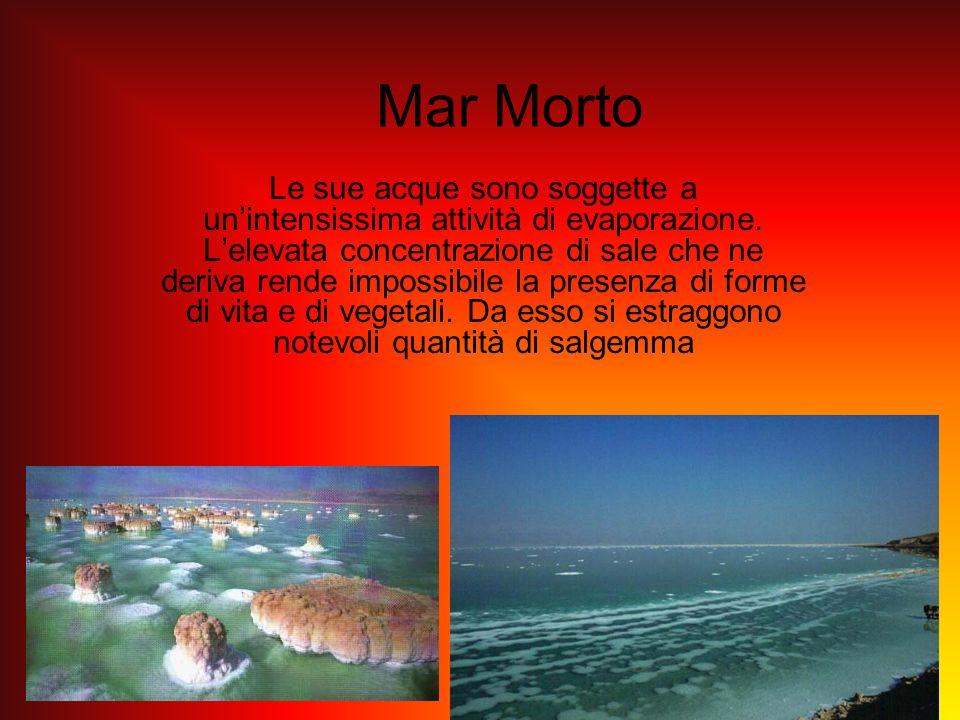 Mar Morto Le sue acque sono soggette a unintensissima attività di evaporazione. Lelevata concentrazione di sale che ne deriva rende impossibile la pre