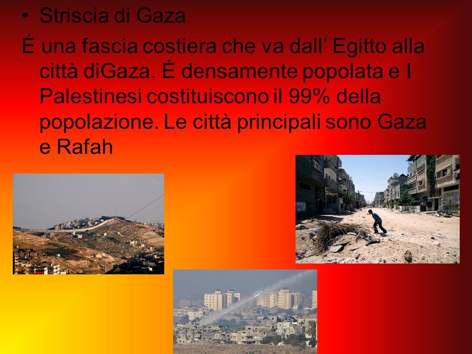Striscia di Gaza É una fascia costiera che va dall Egitto alla città diGaza. É densamente popolata e I Palestinesi costituiscono il 99% della popolazi