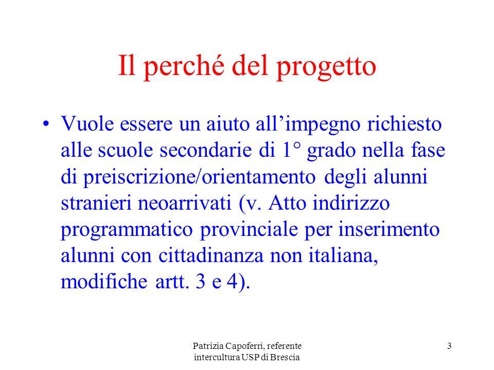 Patrizia Capoferri, referente intercultura USP di Brescia 3 Il perché del progetto Vuole essere un aiuto allimpegno richiesto alle scuole secondarie d