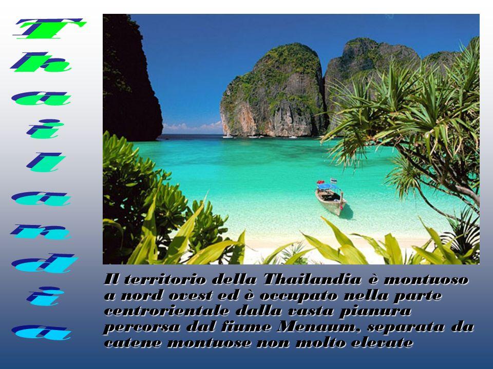 Il territorio della Thailandia è montuoso a nord ovest ed è occupato nella parte centrorientale dalla vasta pianura percorsa dal fiume Menaum, separat