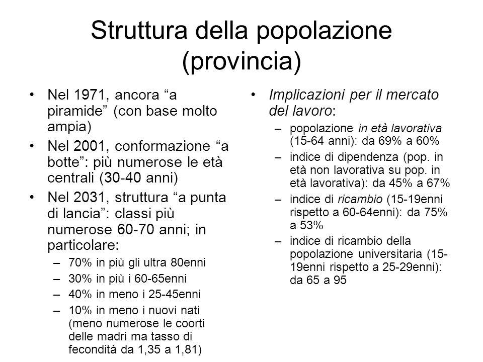 Struttura della popolazione (provincia) Nel 1971, ancora a piramide (con base molto ampia) Nel 2001, conformazione a botte: più numerose le età centra