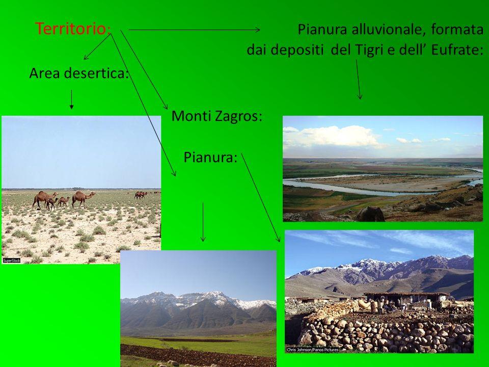 Territorio : Pianura alluvionale, formata dai depositi del Tigri e dell Eufrate: Area desertica: Monti Zagros: Pianura: