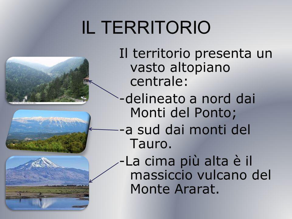 IL TERRITORIO Il territorio presenta un vasto altopiano centrale: -delineato a nord dai Monti del Ponto; -a sud dai monti del Tauro.