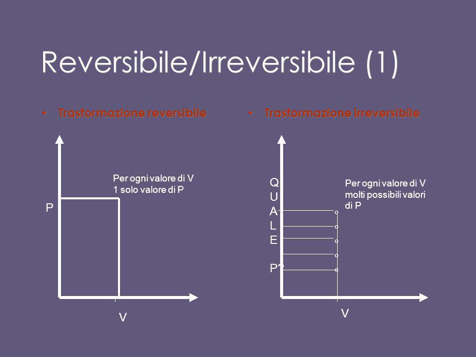 Trasformazione reversibile Se invece si effettua la trasformazione molto lentamente, pressione e temperatura possono essere mantenute uniformi per tut