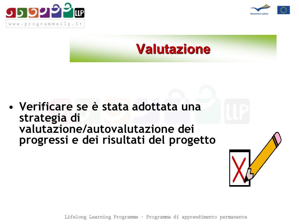 Valutazione Verificare se è stata adottata una strategia di valutazione/autovalutazione dei progressi e dei risultati del progetto