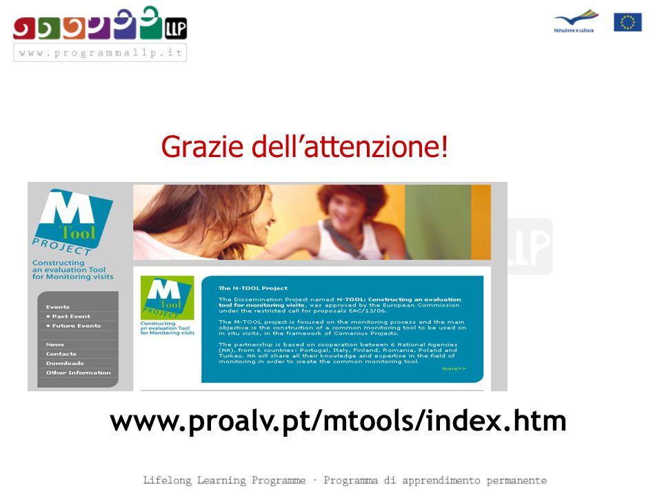 Grazie dellattenzione! www.proalv.pt/mtools/index.htm