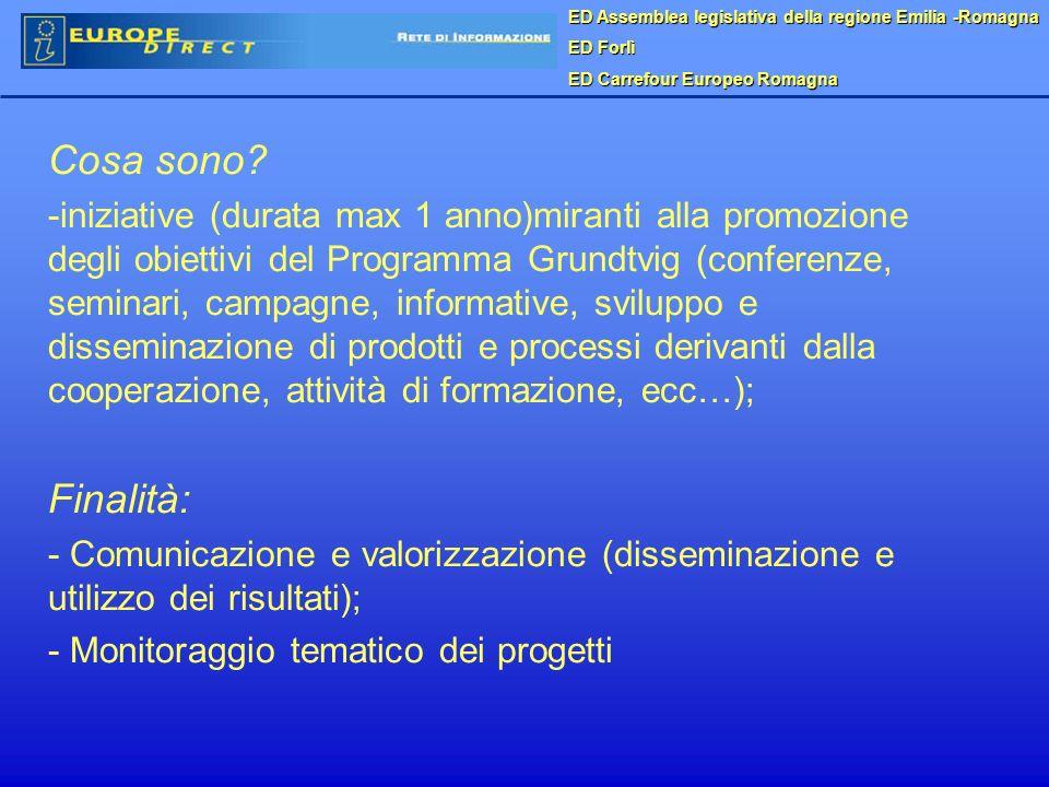 ED Assemblea legislativa della regione Emilia -Romagna ED Forlì ED Carrefour Europeo Romagna Cosa sono? - -iniziative (durata max 1 anno)miranti alla