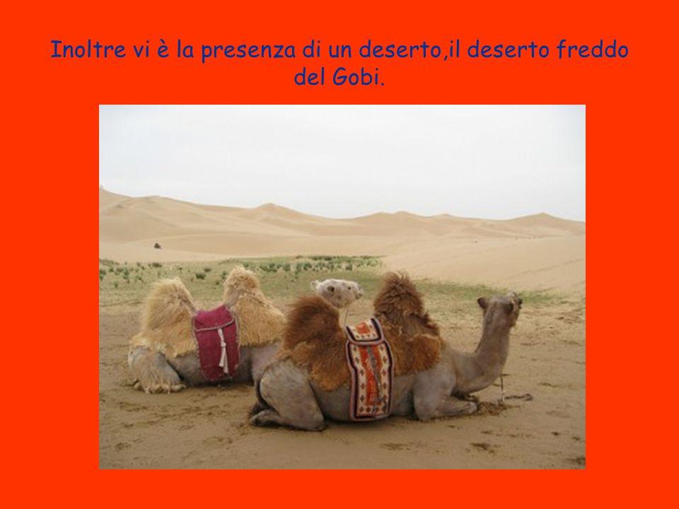 Inoltre vi è la presenza di un deserto,il deserto freddo del Gobi.
