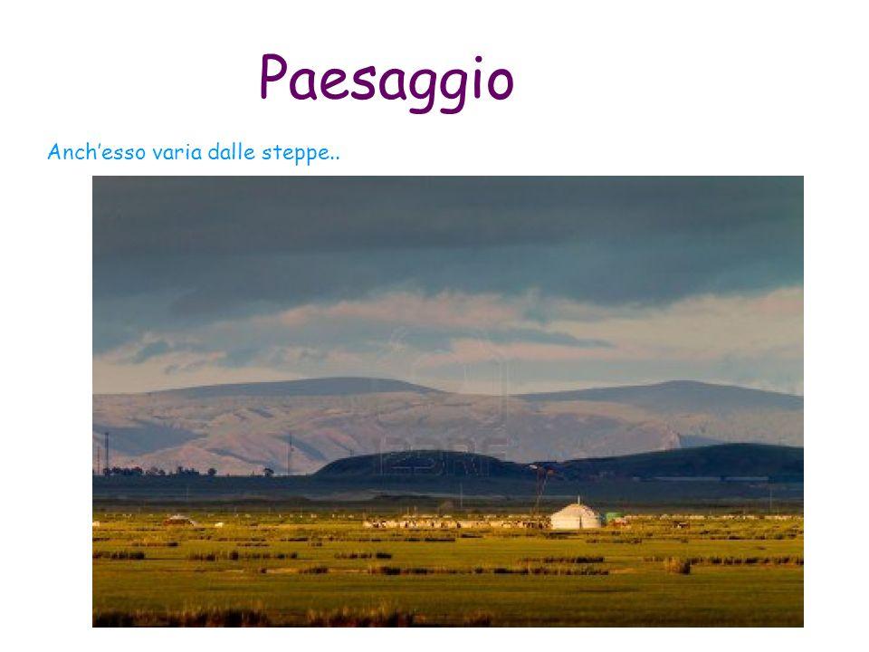 Paesaggio Anchesso varia dalle steppe..
