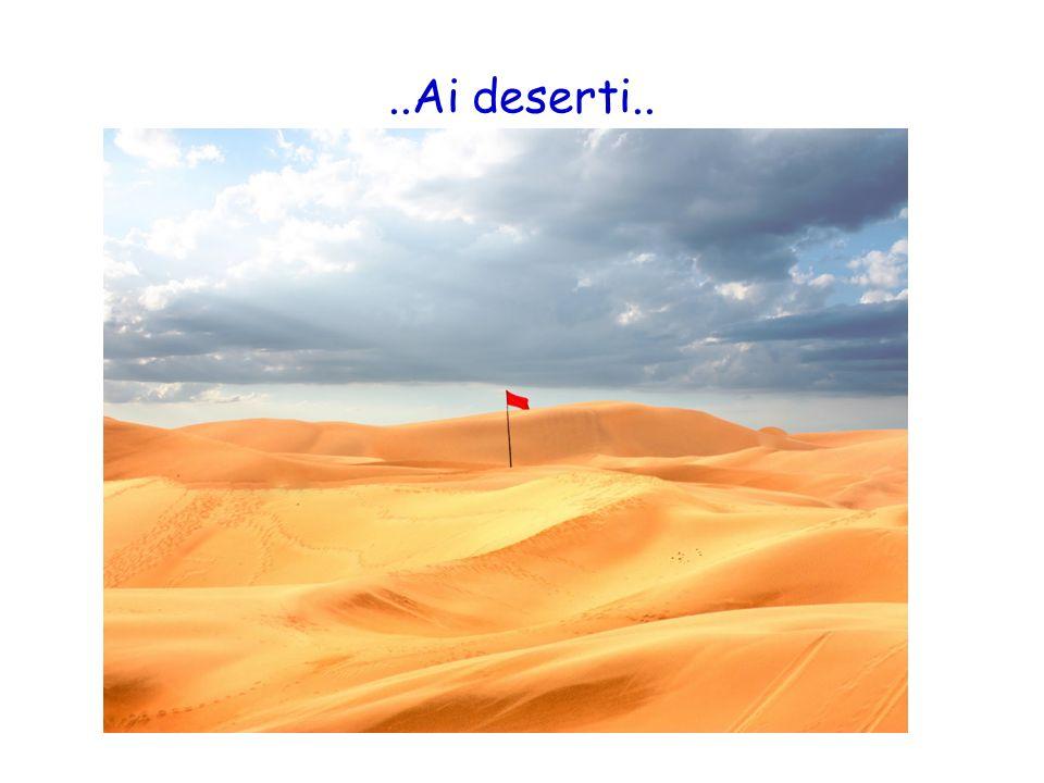 ..Ai deserti..
