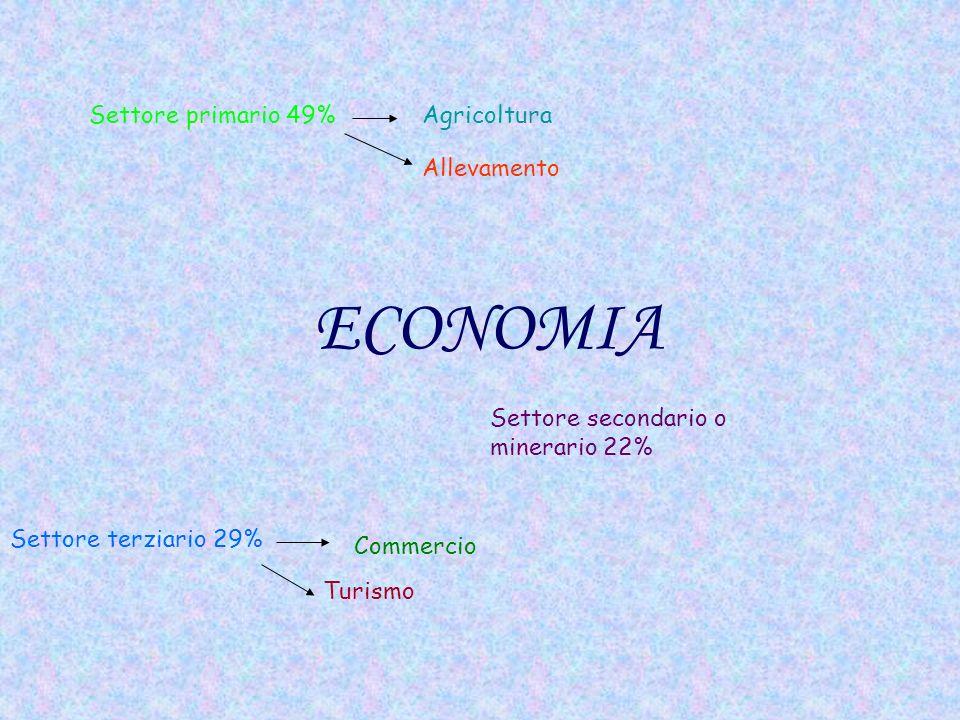 ECONOMIA Settore primario 49%Agricoltura Allevamento Settore secondario o minerario 22% Settore terziario 29% Commercio Turismo