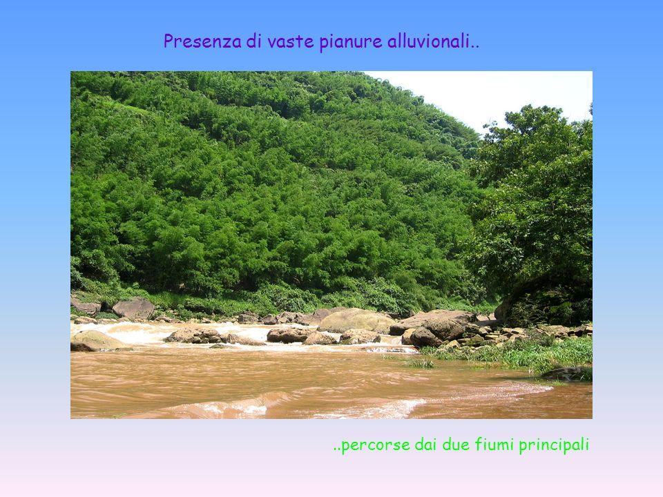 Presenza di vaste pianure alluvionali....percorse dai due fiumi principali