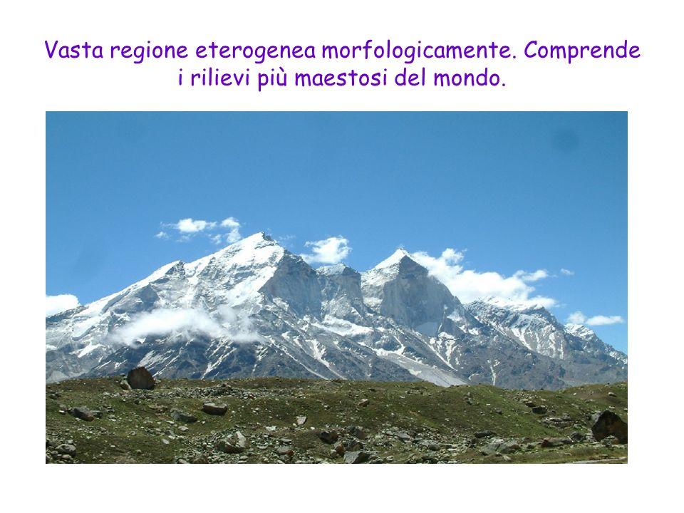 Vasta regione eterogenea morfologicamente. Comprende i rilievi più maestosi del mondo.