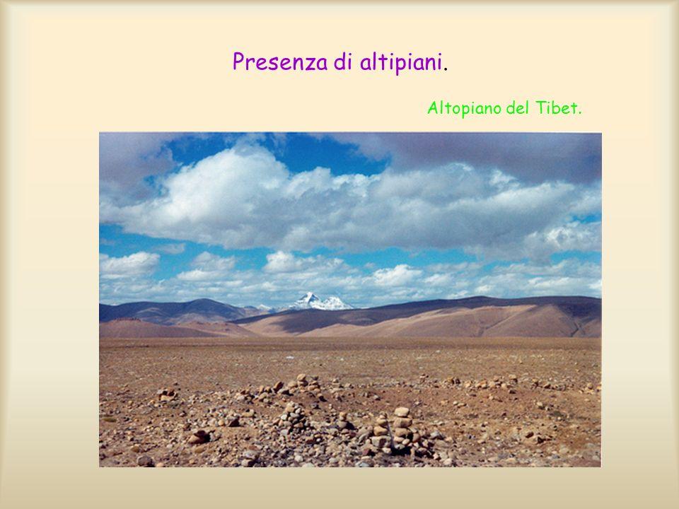 Laltopiano Mongolo