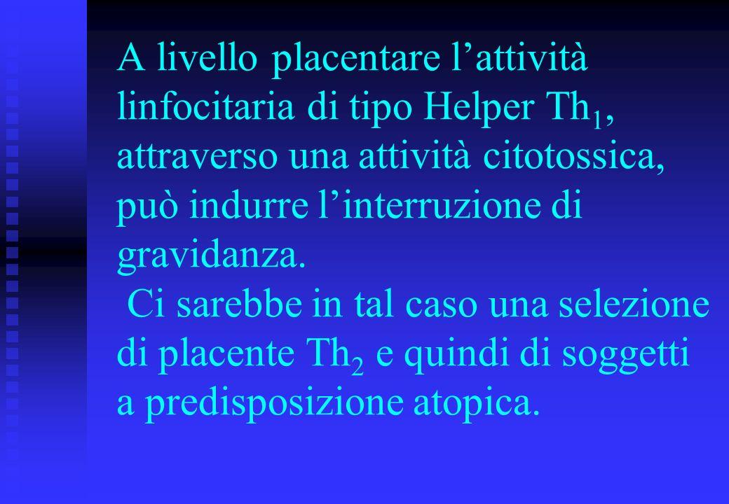 A livello placentare lattività linfocitaria di tipo Helper Th 1, attraverso una attività citotossica, può indurre linterruzione di gravidanza. Ci sare