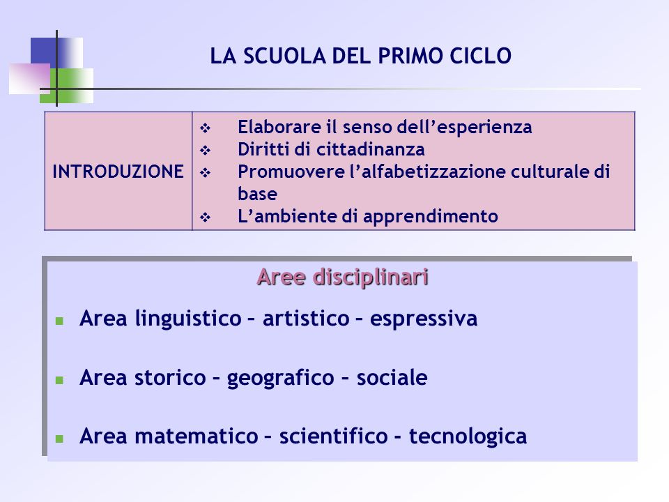 INTRODUZIONE Elaborare il senso dellesperienza Diritti di cittadinanza Promuovere lalfabetizzazione culturale di base Lambiente di apprendimento Aree