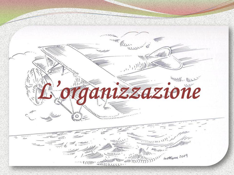 Lorganizzazione