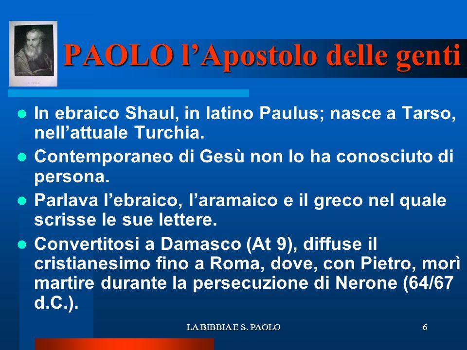 LA BIBBIA E S. PAOLO6 PAOLO lApostolo delle genti In ebraico Shaul, in latino Paulus; nasce a Tarso, nellattuale Turchia. Contemporaneo di Gesù non lo