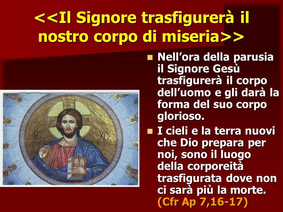 > > Nellora della parusia il Signore Gesù trasfigurerà il corpo delluomo e gli darà la forma del suo corpo glorioso. Nellora della parusia il Signore