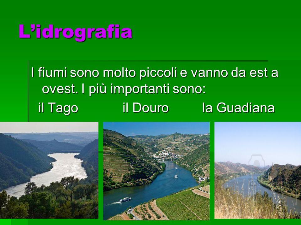 Lidrografia I fiumi sono molto piccoli e vanno da est a ovest. I più importanti sono: il Tago il Douro la Guadiana il Tago il Douro la Guadiana