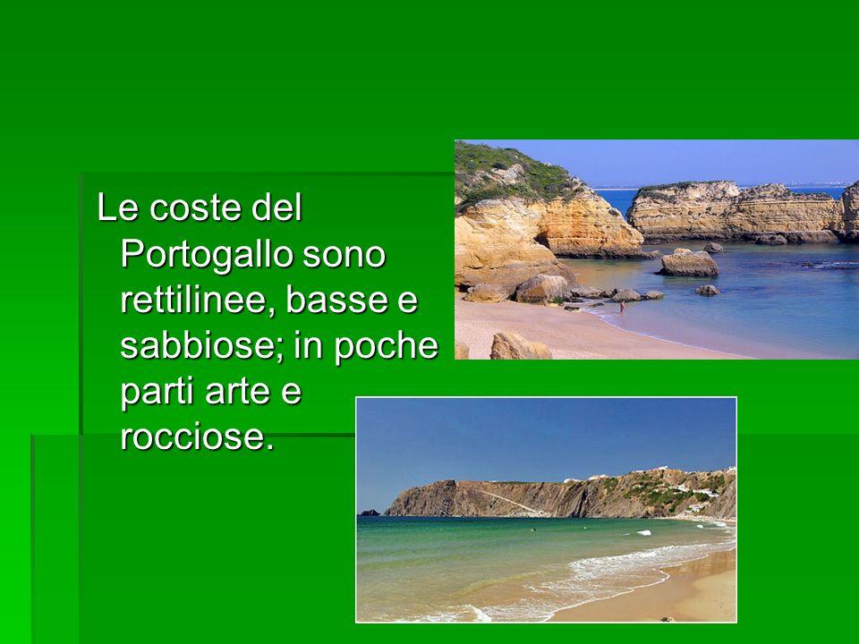 Le coste del Portogallo sono rettilinee, basse e sabbiose; in poche parti arte e rocciose. Le coste del Portogallo sono rettilinee, basse e sabbiose;