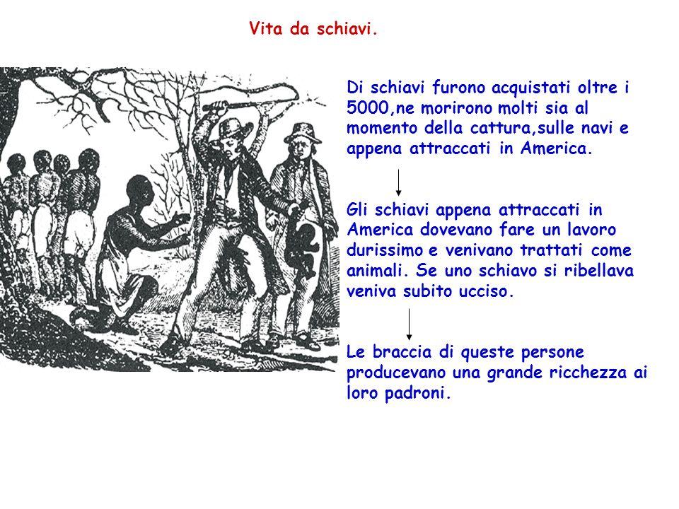 Vita da schiavi. Di schiavi furono acquistati oltre i 5000,ne morirono molti sia al momento della cattura,sulle navi e appena attraccati in America. G