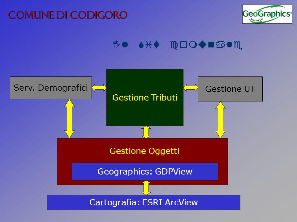COMUNE DI CODIGORO Il Sit comunale Cartografia: ESRI ArcView Geographics: GDPView Gestione Tributi Serv.