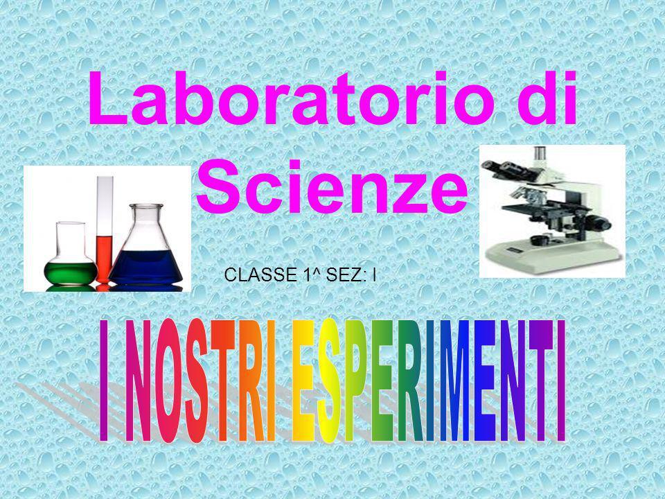 Laboratorio di Scienze CLASSE 1^ SEZ: I