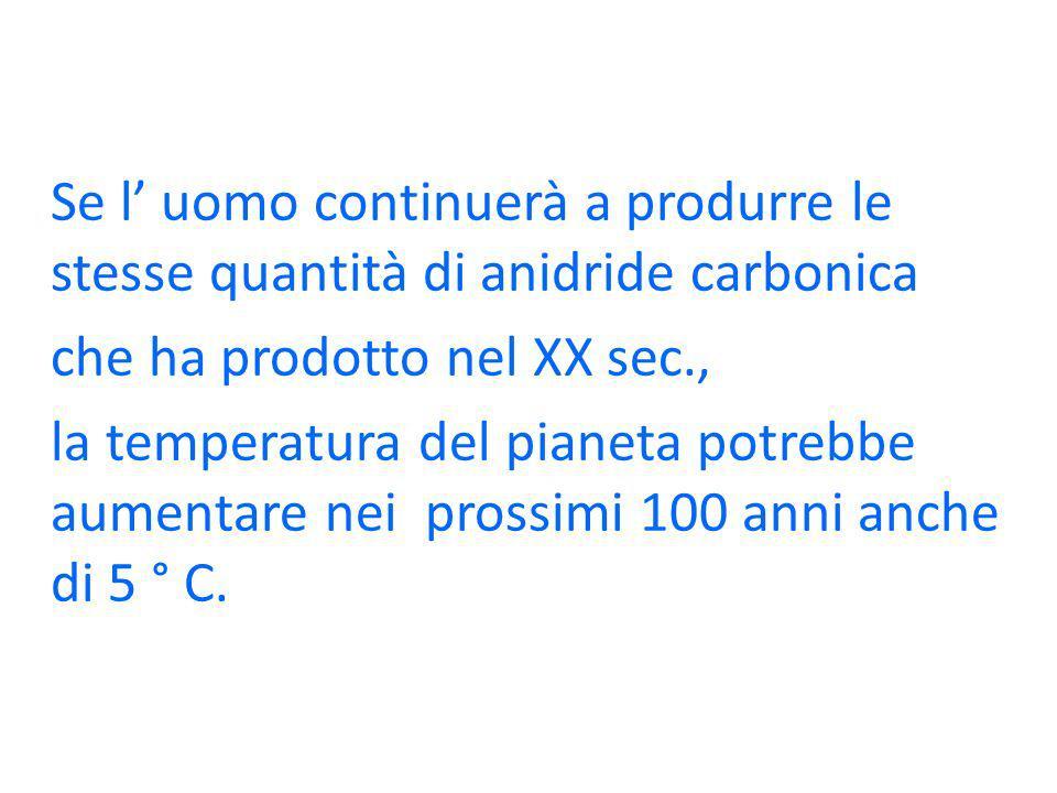 Se l uomo continuerà a produrre le stesse quantità di anidride carbonica che ha prodotto nel XX sec., la temperatura del pianeta potrebbe aumentare ne