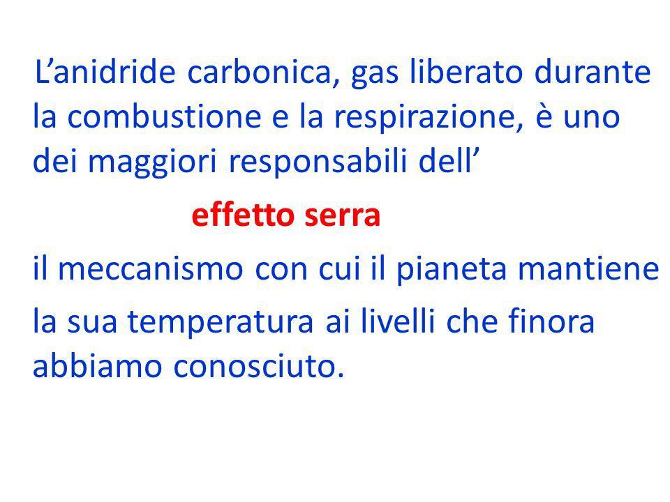 Lanidride carbonica, gas liberato durante la combustione e la respirazione, è uno dei maggiori responsabili dell effetto serra il meccanismo con cui i