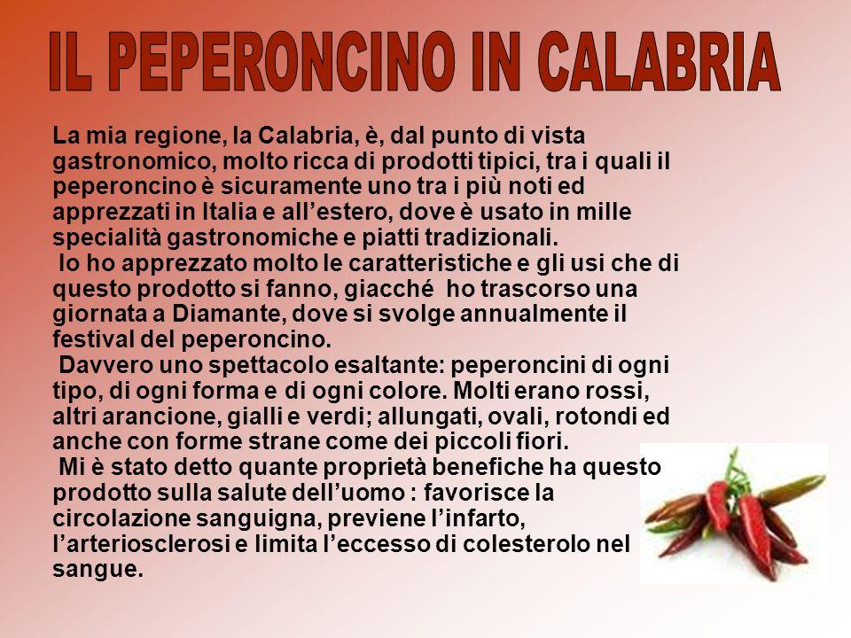 La mia regione, la Calabria, è, dal punto di vista gastronomico, molto ricca di prodotti tipici, tra i quali il peperoncino è sicuramente uno tra i pi
