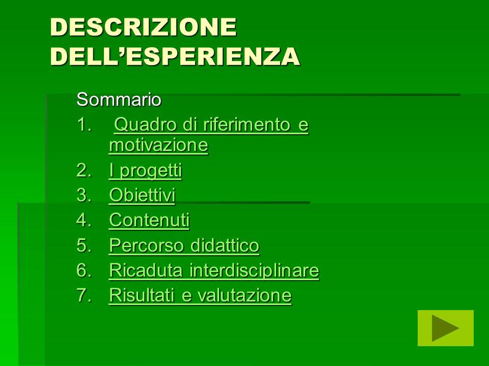 DESCRIZIONE DELLESPERIENZA Sommario 1.
