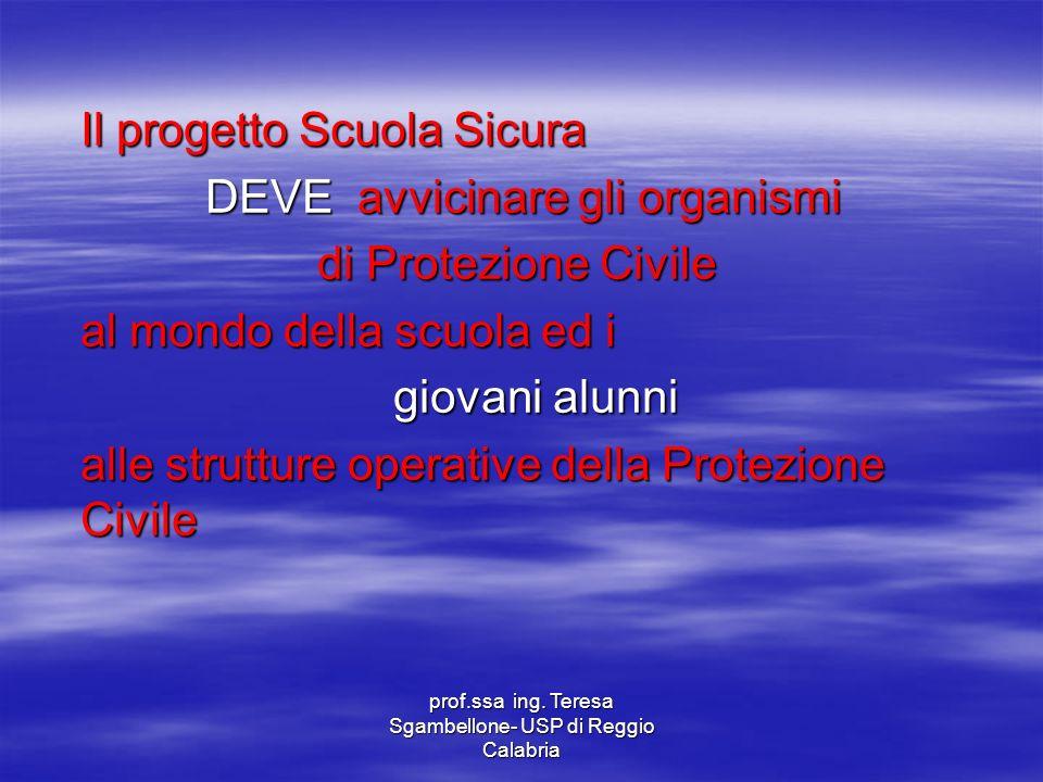 prof.ssa ing. Teresa Sgambellone- USP di Reggio Calabria Il progetto Scuola Sicura DEVE avvicinare gli organismi DEVE avvicinare gli organismi di Prot