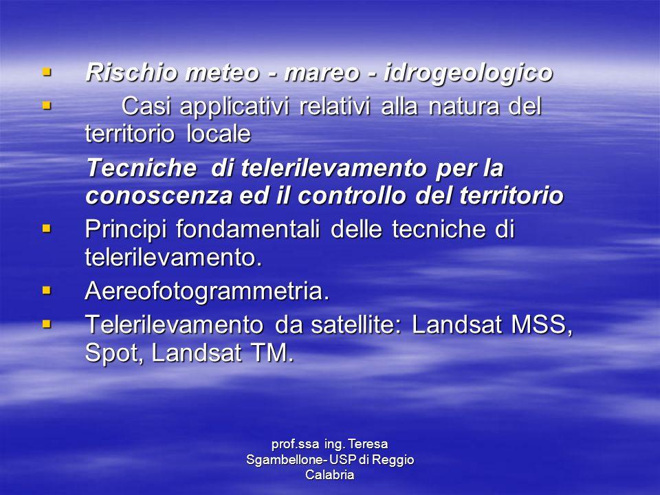 prof.ssa ing. Teresa Sgambellone- USP di Reggio Calabria Rischio meteo - mareo - idrogeologico Rischio meteo - mareo - idrogeologico Casi applicativi