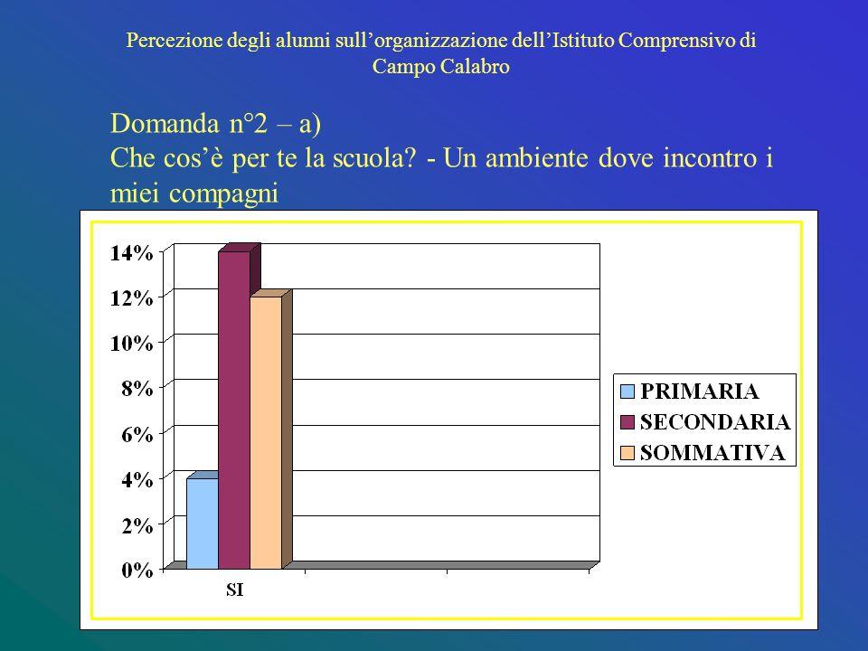 Percezione degli alunni sullorganizzazione dellIstituto Comprensivo di Campo Calabro Domanda n°2 – a) Che cosè per te la scuola.