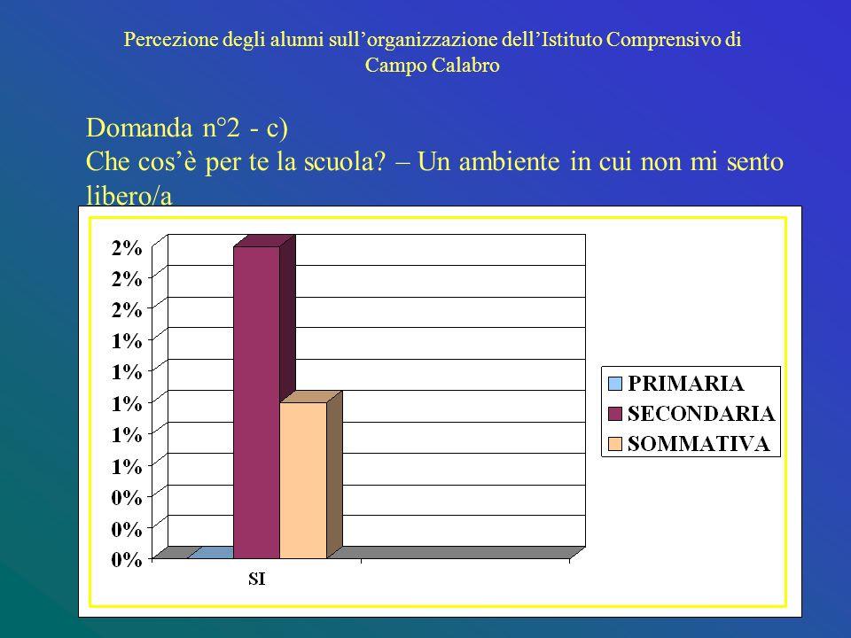 Percezione degli alunni sullorganizzazione dellIstituto Comprensivo di Campo Calabro Domanda n°2 - c) Che cosè per te la scuola.