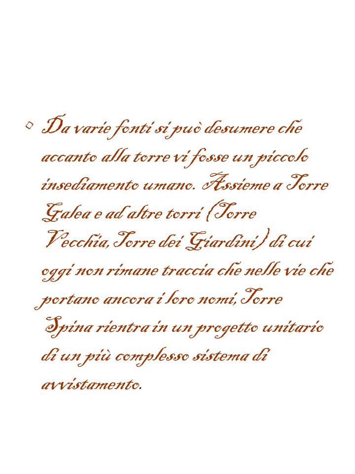 Torre Spina del Cavallaro Nelle adiacenze del teatro si trova la Torre Borraca o Torre Spina,detta anche del Cavallaro. Di forma cilindrica,con base a