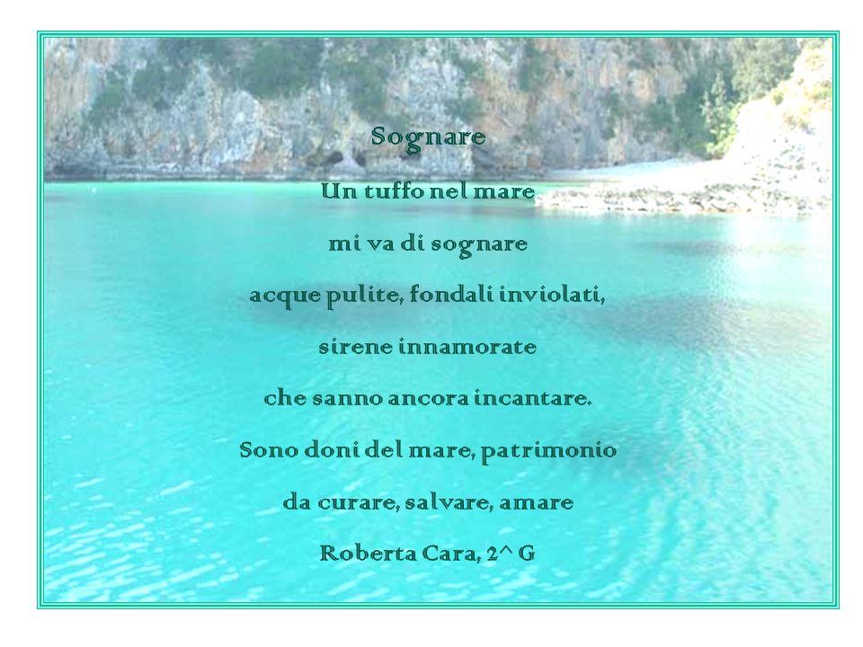 Sognare Un tuffo nel mare mi va di sognare acque pulite, fondali inviolati, sirene innamorate che sanno ancora incantare. Sono doni del mare, patrimon