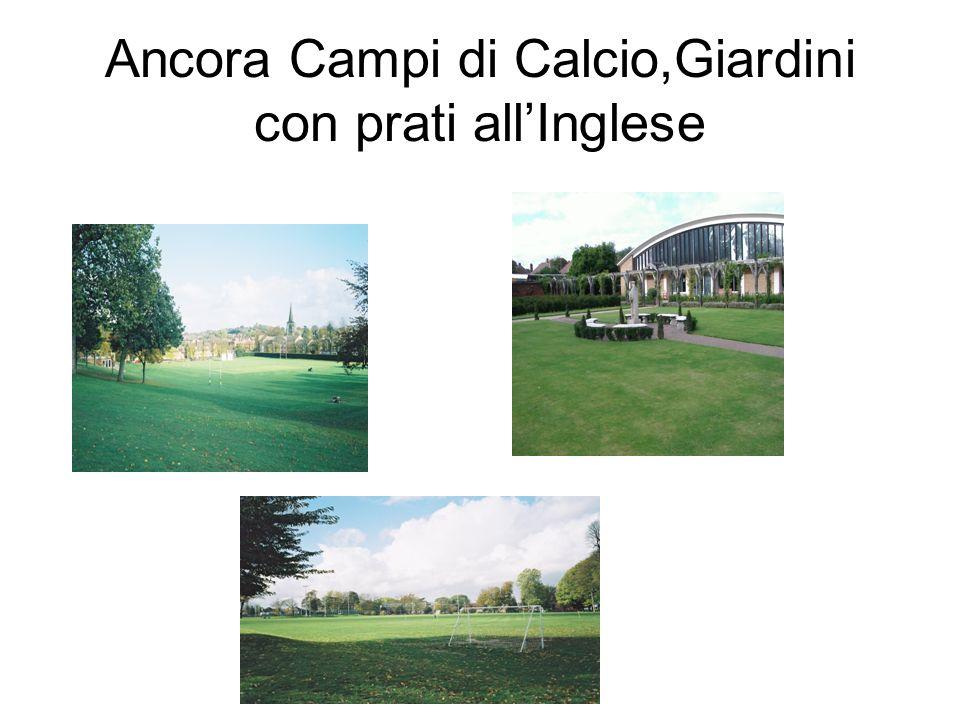 Ancora Campi di Calcio,Giardini con prati allInglese