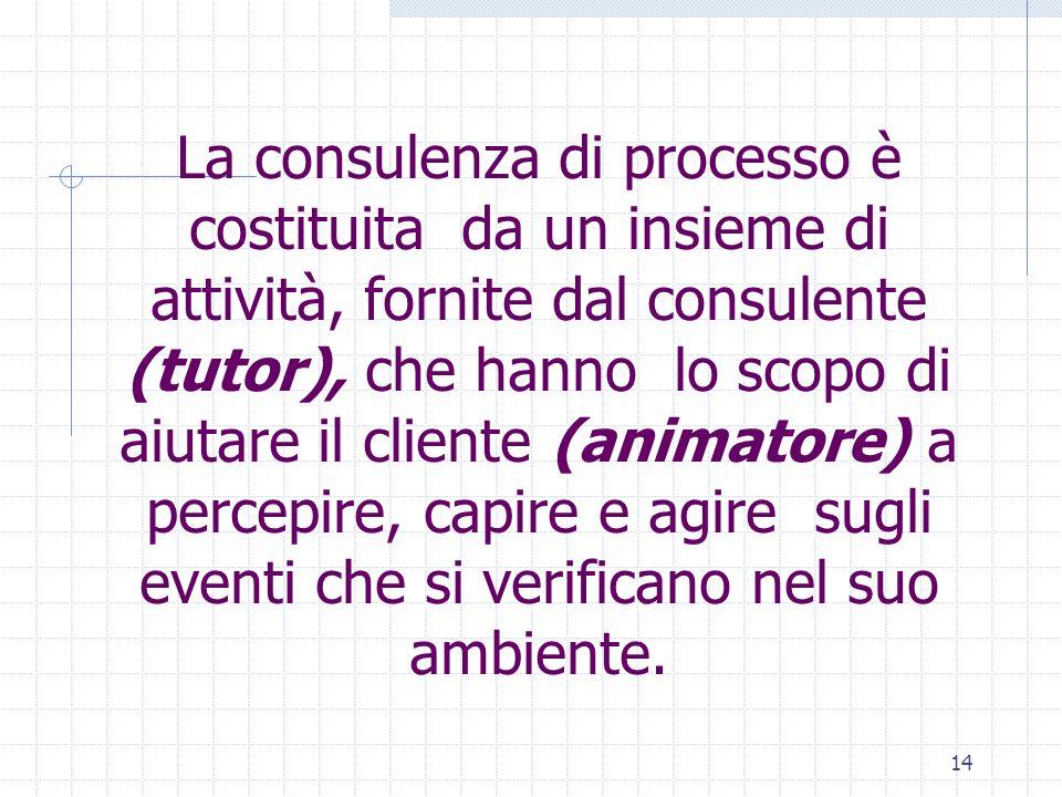 14 La consulenza di processo è costituita da un insieme di attività, fornite dal consulente (tutor), che hanno lo scopo di aiutare il cliente (animato