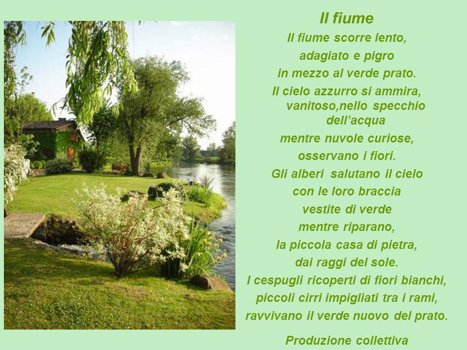 Il fiume Il fiume scorre lento, adagiato e pigro in mezzo al verde prato. Il cielo azzurro si ammira, vanitoso,nello specchio dellacqua mentre nuvole