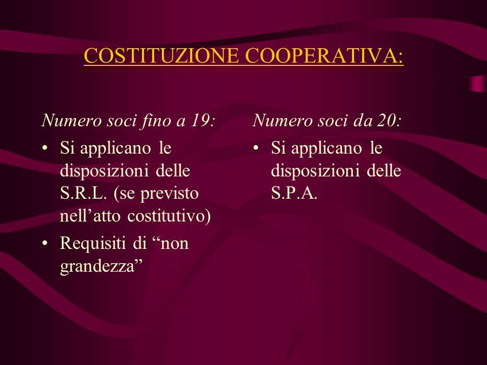 COSTITUZIONE COOPERATIVA: Numero soci fino a 19: Si applicano le disposizioni delle S.R.L. (se previsto nellatto costitutivo) Requisiti di non grandez