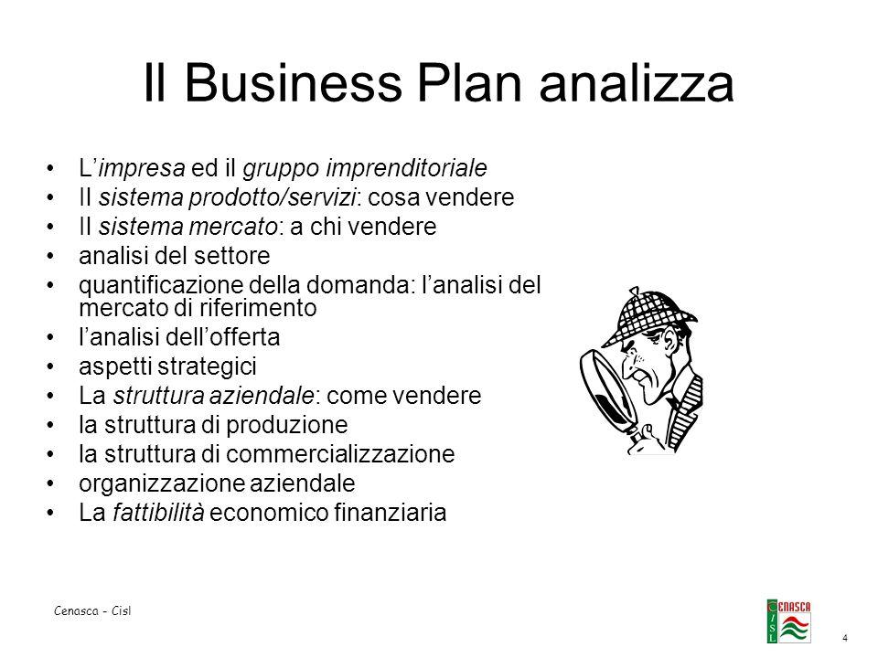 4 Cenasca - Cisl Il Business Plan analizza Limpresa ed il gruppo imprenditoriale Il sistema prodotto/servizi: cosa vendere Il sistema mercato: a chi v