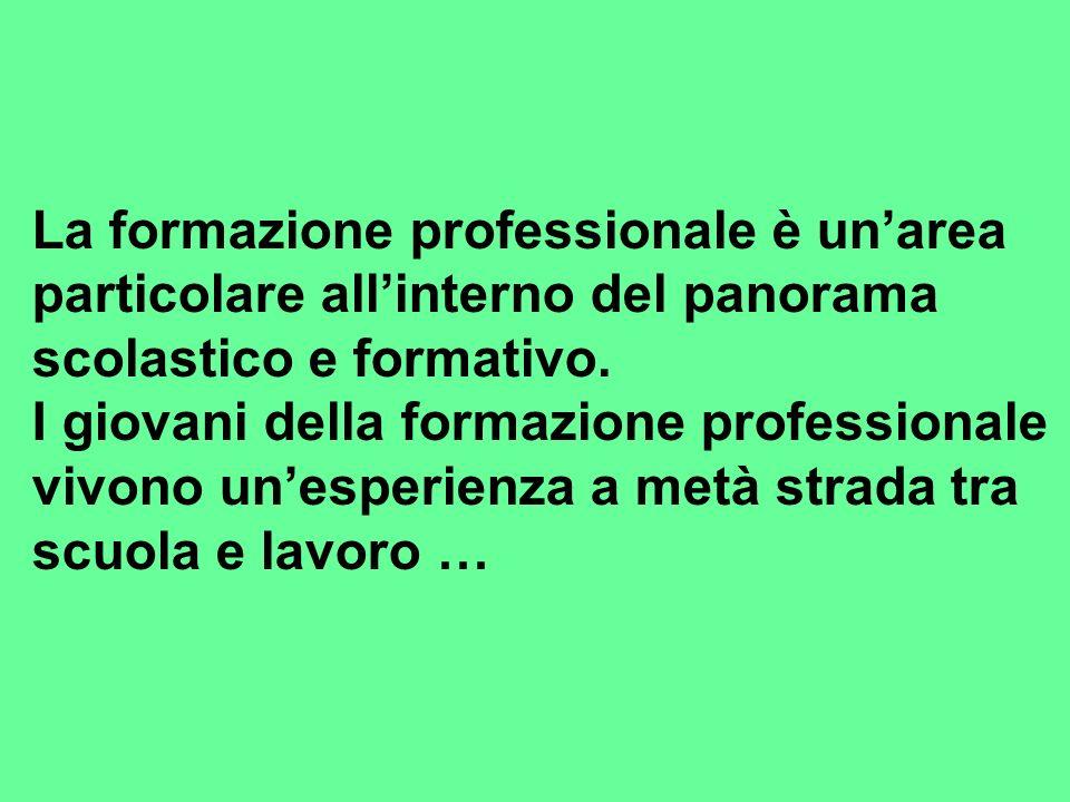 La formazione professionale è unarea particolare allinterno del panorama scolastico e formativo.