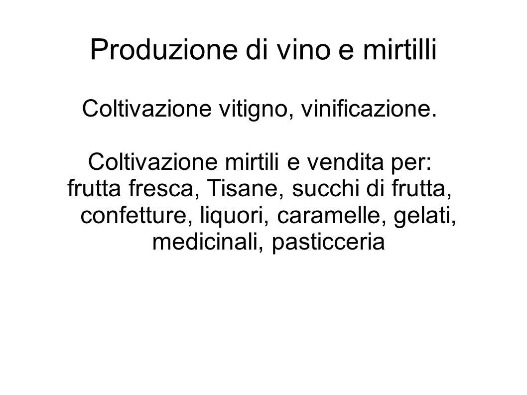 Produzione di vino e mirtilli Coltivazione vitigno, vinificazione. Coltivazione mirtili e vendita per: frutta fresca, Tisane, succhi di frutta, confet