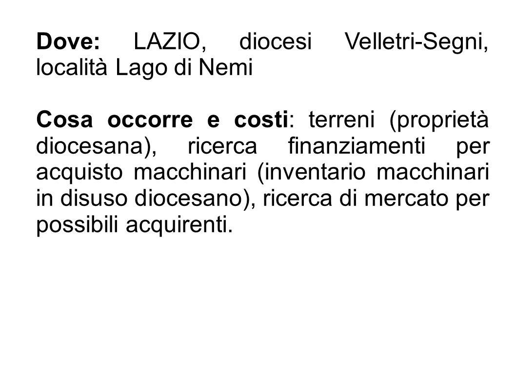 Dove: LAZIO, diocesi Velletri-Segni, località Lago di Nemi Cosa occorre e costi: terreni (proprietà diocesana), ricerca finanziamenti per acquisto mac