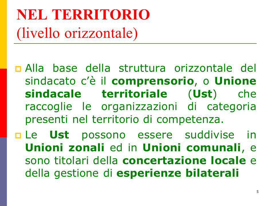 5 NEL TERRITORIO (livello orizzontale) Alla base della struttura orizzontale del sindacato cè il comprensorio, o Unione sindacale territoriale (Ust) c