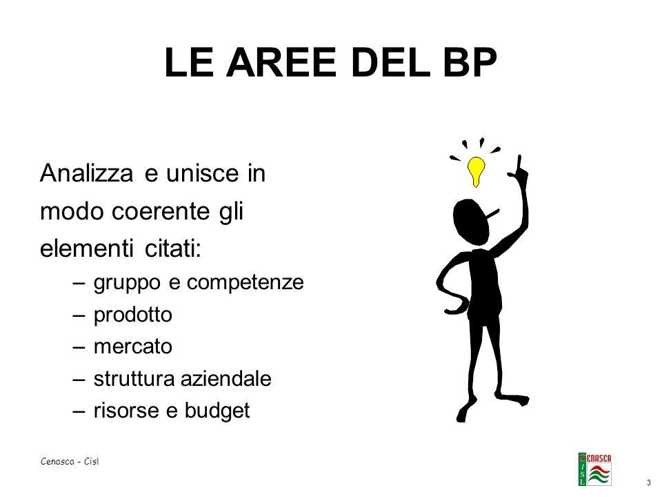 3 Cenasca - Cisl LE AREE DEL BP Analizza e unisce in modo coerente gli elementi citati: –gruppo e competenze –prodotto –mercato –struttura aziendale –risorse e budget